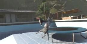 Goat Simulator выходит на новый уровень