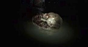 Обзор Resident Evil 7. Добро пожаловать в семью, сынок (видео)