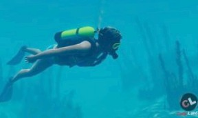 World Of Diving - ну очень необычная MMORPG